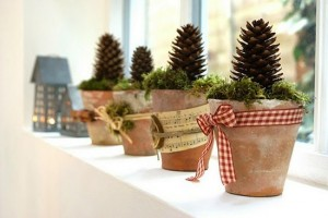 mini christmas tree pine cones in clay pot with christmas ribbon