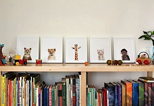 baby room ideas for nursey artwork with baby animal photos