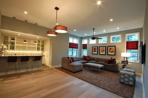 area rug absorbs sound in family room