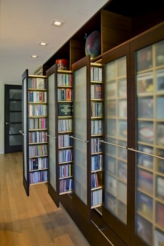 family room dvd storage idea with sliding shelf units